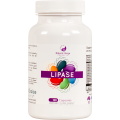 Lipase 100 count bottle